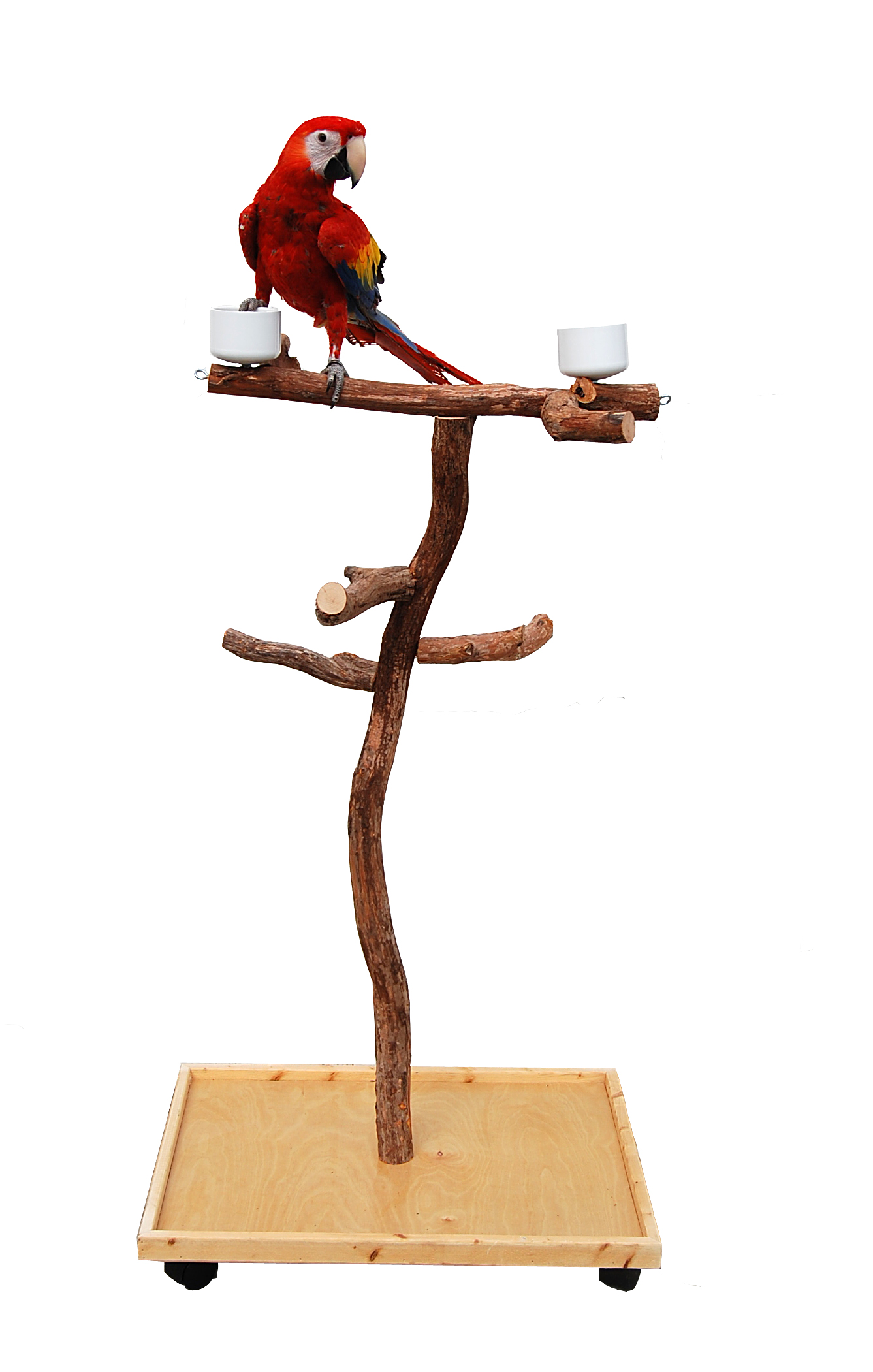 a dragonwood play stand for large parrots